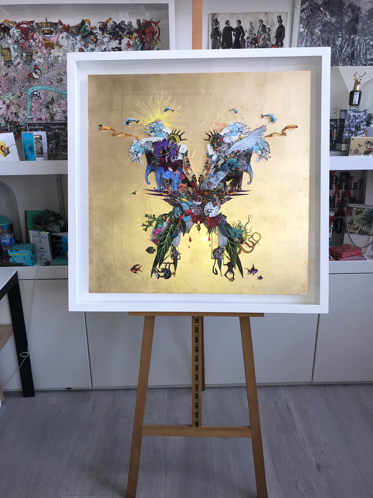 Coldplay's Butterfly Package by Kristjana S Williams | Album